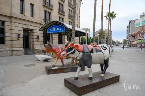 Vacas museo Arocena