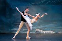 Odette - Ksenia Pujlovskaya,Siegfried - Ivan Zvyagintsev