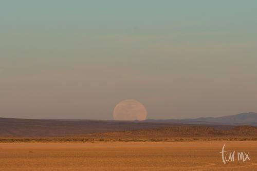 Luna saliendo