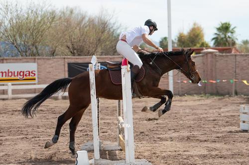 Concurso de salto Las Brisas