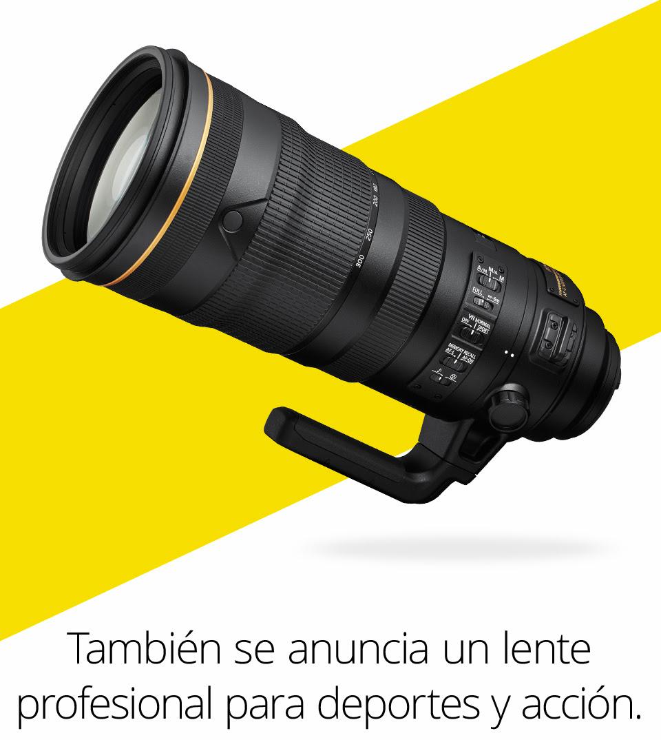 Nikkor 120-300mm f/2.8